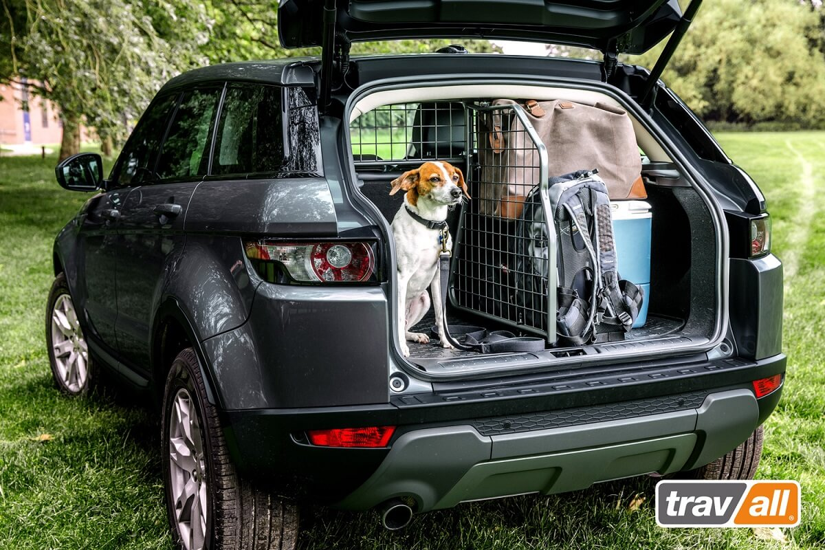 Safety Pack mit Hund und Gepäck