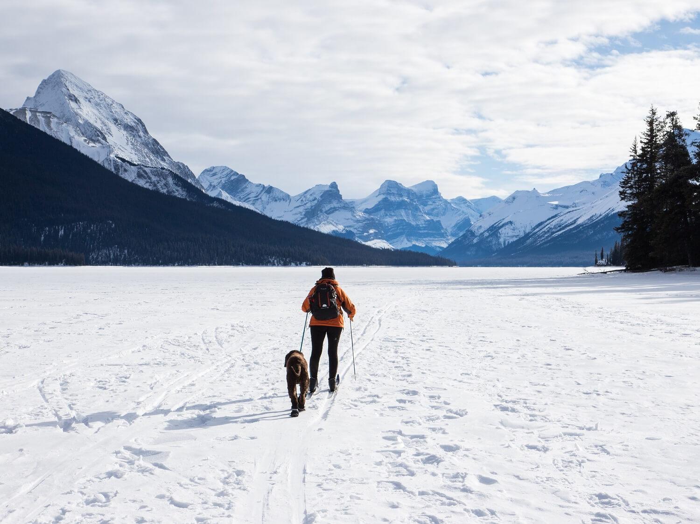 Ein weißes Winterwunderland zieht nicht nur uns Zweibeiner raus in die Natur. Auch viele Hunde werden zu echten Schneehasen, die sich total gern austoben, wenn es draußen weiß und kalt ist. Heute zeigen wir euch, was ihr beachten solltet, wenn ihr eure Vierbeiner in den Wintersport einbeziehen möchtet.