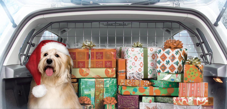 Wir von Travall wünschen allen Lesern ein frohes Weihnachtsfest und einen guten Rutsch ins neue Jahr 2018! Wir versenden Pakete vom 27. - 19.12.2017 und unsere Kundenservice ist in kleiner Besetzung für Sie da.