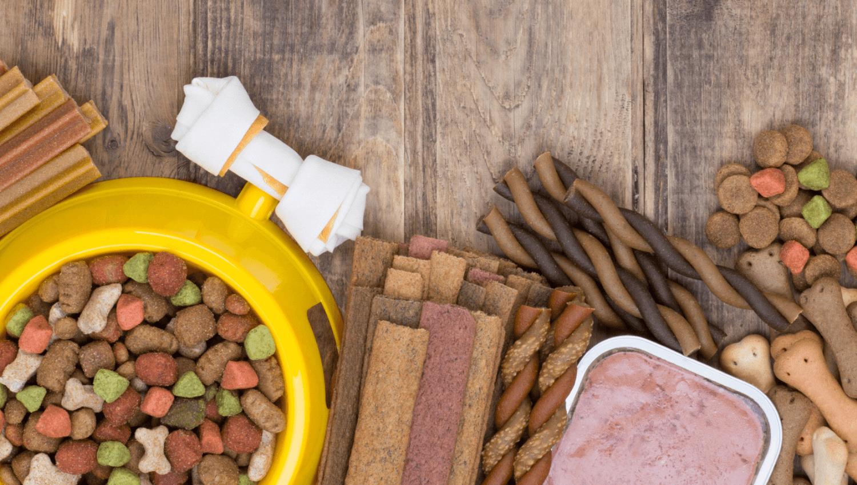 Ist Trockenfutter oder Nassfutter besser für Hunde? Wir erklären die Vorteile uind Nachteile beider Sorten.
