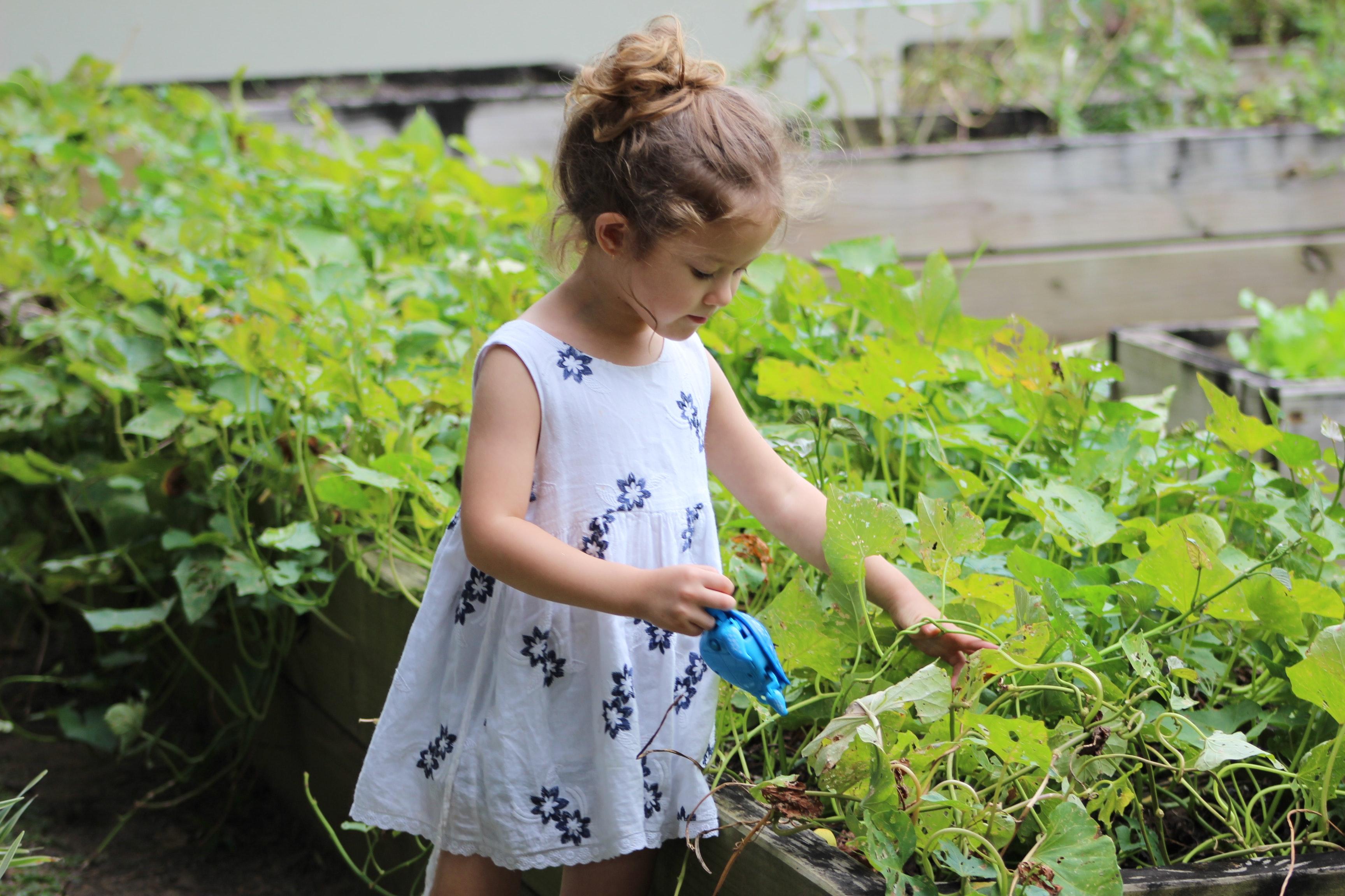 Wir von Travall lieben Natur und Tiere. Deshalb möchten wir in diesem Beitrag Ideen zum nachhaltigen Gärtnern vorstellen. Das Kind im Bild spielt mit einer kleinen Gießkanne im Beet. Die Eltern haben ein grünes Gewissen und verwenden weder Kunstdünger noch Pestizide. © Pexels.com