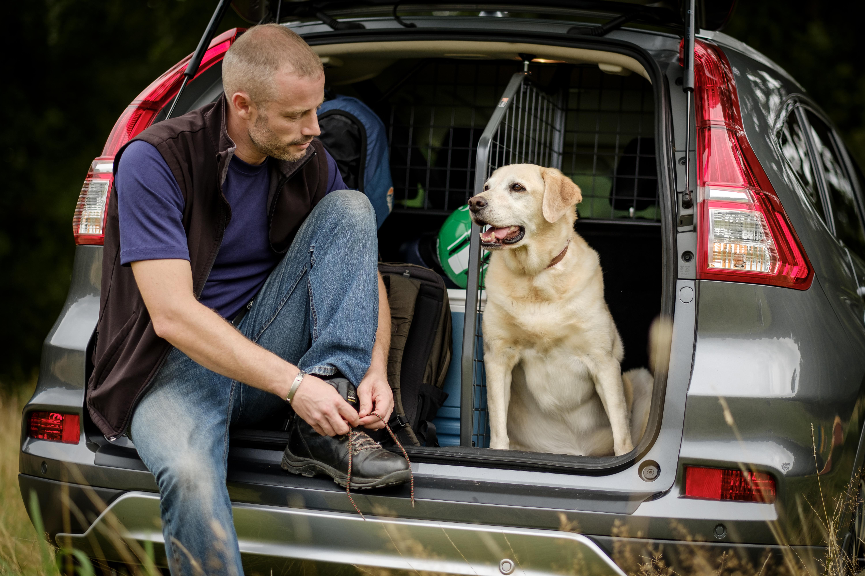 Wer Urlaub mit Hund macht, der macht dem Haustier eine besondere Freude. Und wenn man mit dem Auto fährt, dann ist das für den Hund einfacher zu verkraften als eine Reise mit dem Flugzeug oder Schiff. © Travall