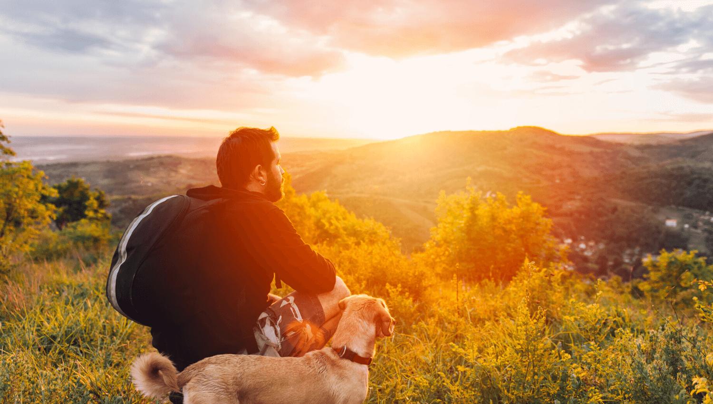 Die Sommerferien machen erst dann richtig Spaß, wenn wir Urlaub mit Hund machen. Wir von Travall verraten euch Tipps und Tricks, damit die Planung der Reise leichter wird. © iStock.com