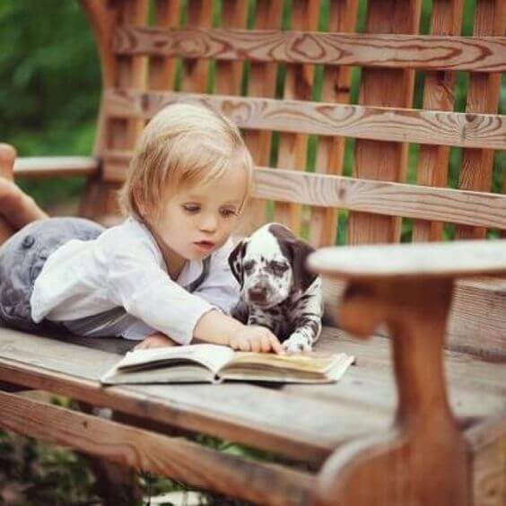 Very young boy lying on wooden bench, reading story to dalmation puppy