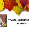 Travall's Rescues: Hunter