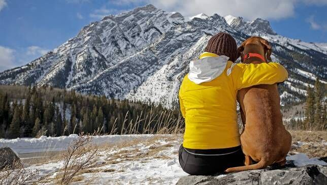 Woman in yellow jacket sitting in the wilderness hugging dog