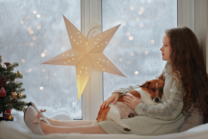 Christmas safety for dogs