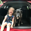 Your chance to win a premium pet barrier from Travall